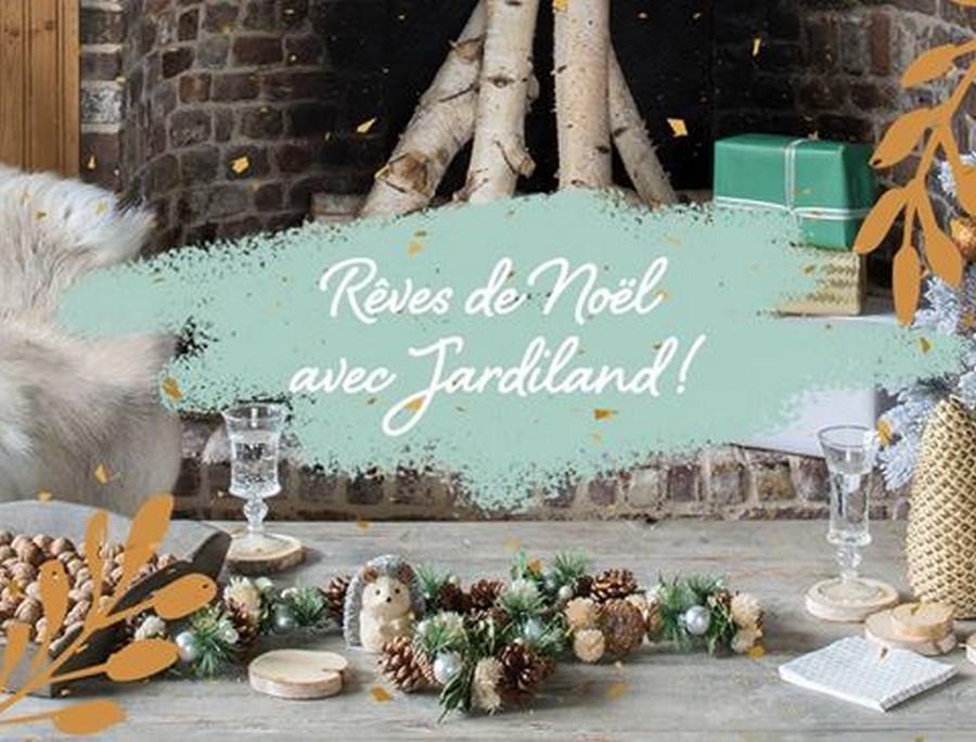 Jardiland prépare Noël dans la zone commerciale CAP'NOR de Cherbourg